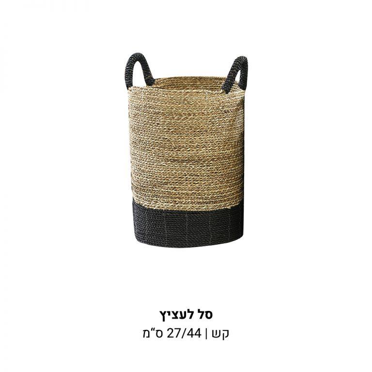 עמוד-מוצר-סל-קש-לעציץ