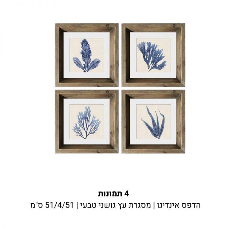 עמוד-מוצר-4-תמונות-זולה