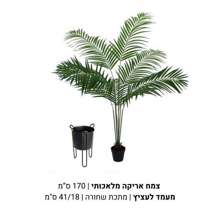 צמח אריקה מלאכותי מעמד לעציץ ממתכת שחורה
