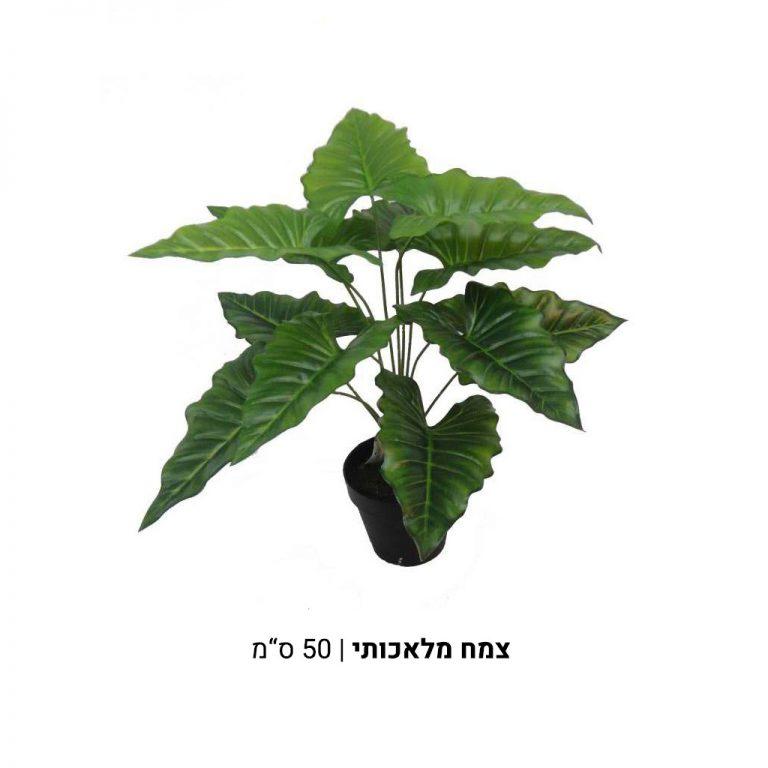 צמח-מלאכותי-1